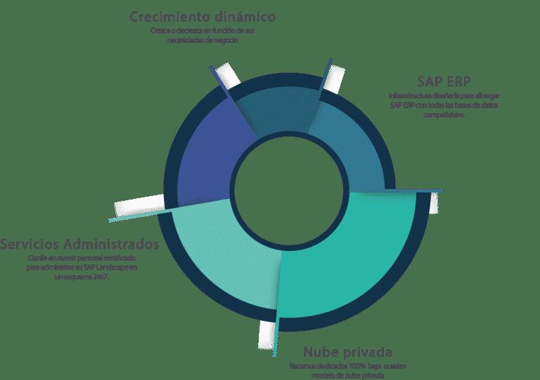 Hosting SAP ERP